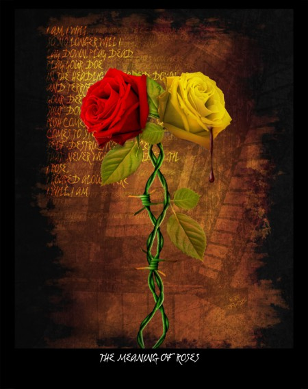 the_meaning_of_roses_by_pixelmunky.jpg